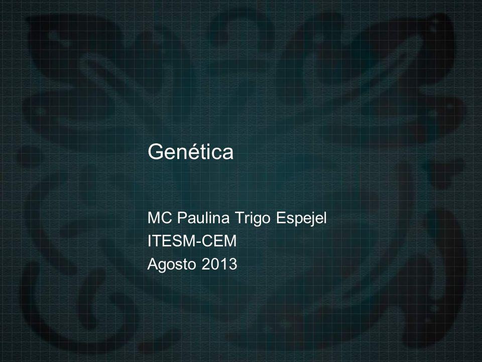MC Paulina Trigo Espejel ITESM-CEM Agosto 2013