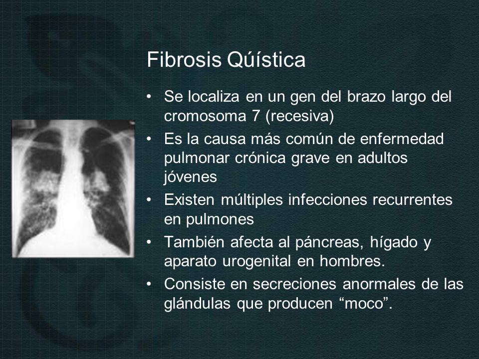 Fibrosis Qúística Se localiza en un gen del brazo largo del cromosoma 7 (recesiva)