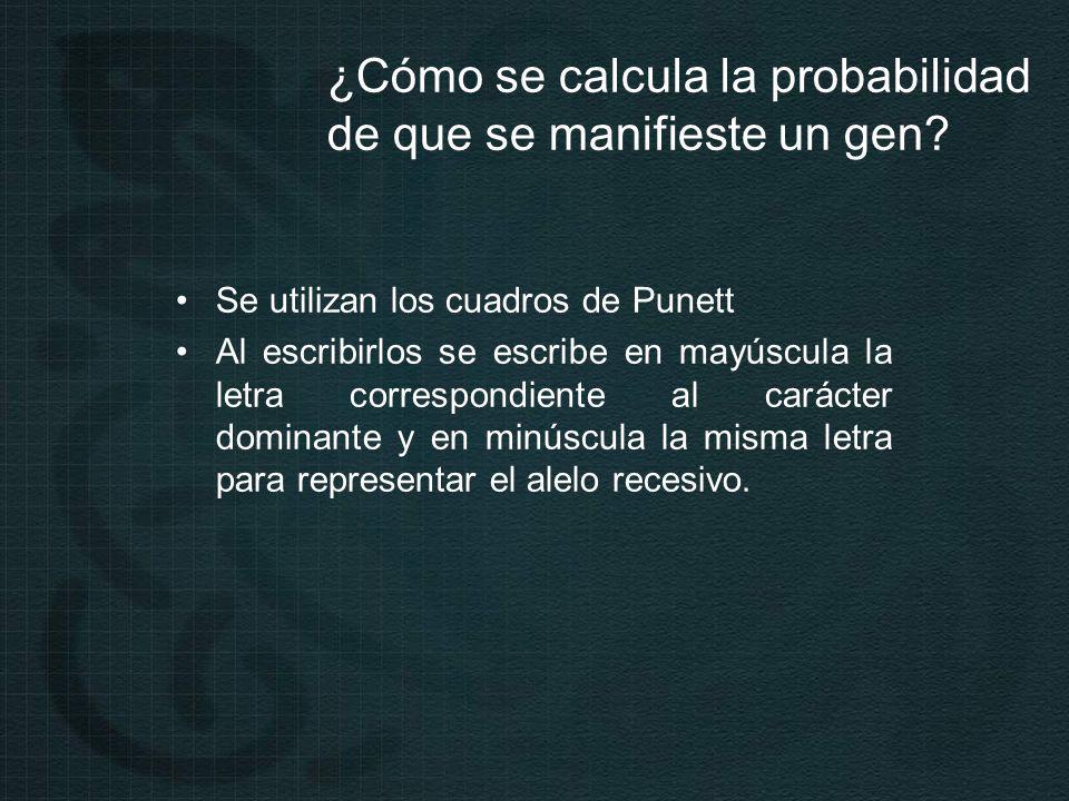 ¿Cómo se calcula la probabilidad de que se manifieste un gen