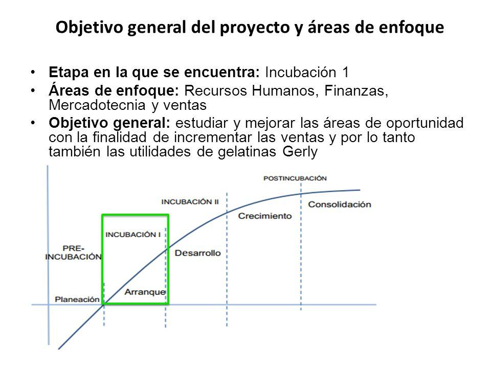 Objetivo general del proyecto y áreas de enfoque
