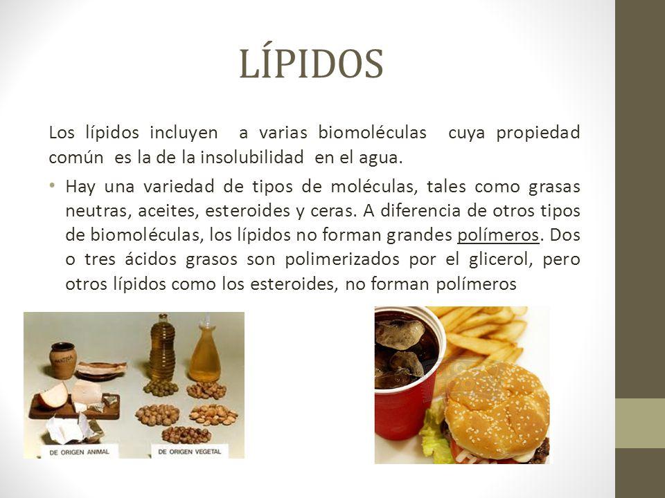 LÍPIDOS Los lípidos incluyen a varias biomoléculas cuya propiedad común es la de la insolubilidad en el agua.