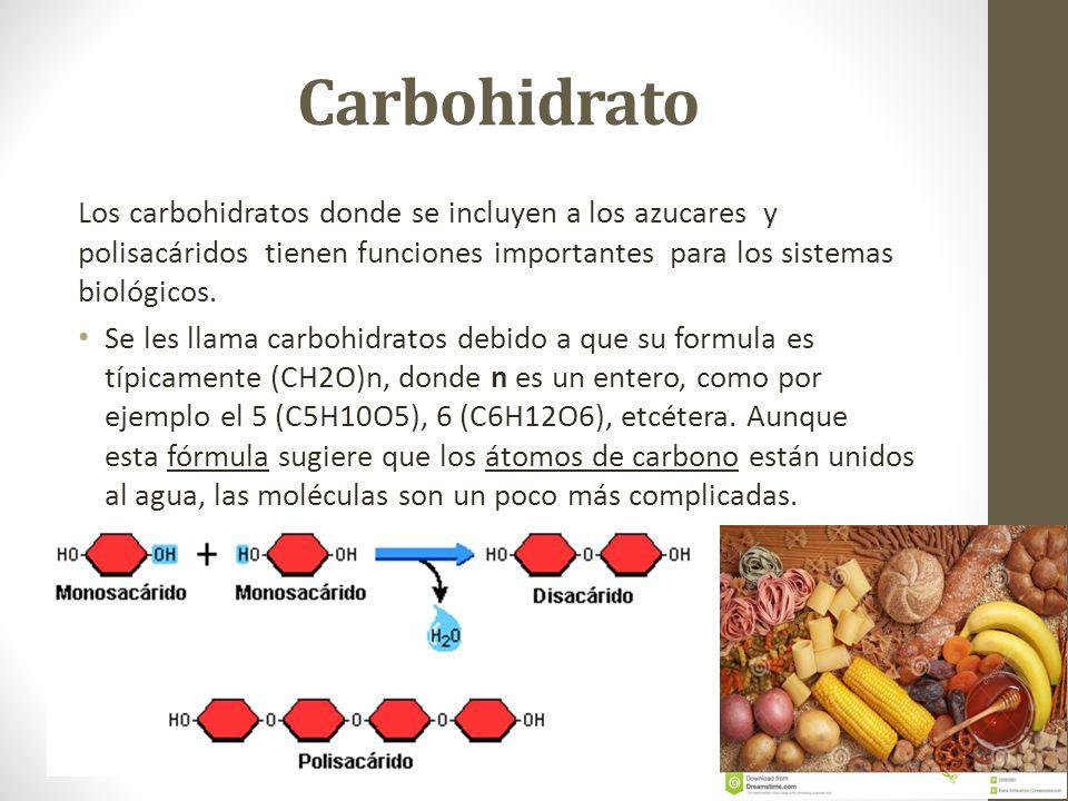 Carbohidrato Los carbohidratos donde se incluyen a los azucares y polisacáridos tienen funciones importantes para los sistemas biológicos.