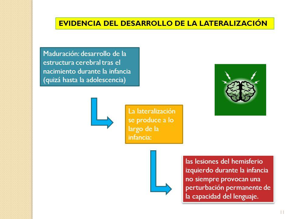 EVIDENCIA DEL DESARROLLO DE LA LATERALIZACIÓN