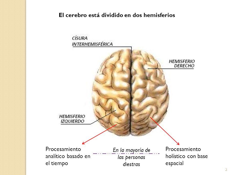 El cerebro está dividido en dos hemisferios