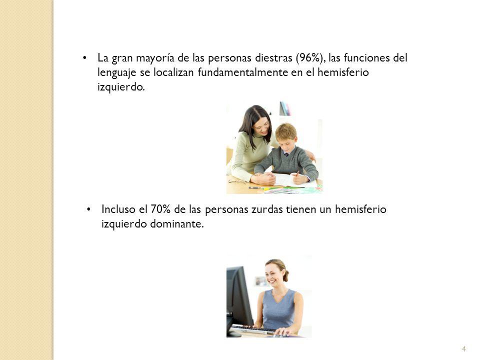 La gran mayoría de las personas diestras (96%), las funciones del lenguaje se localizan fundamentalmente en el hemisferio izquierdo.