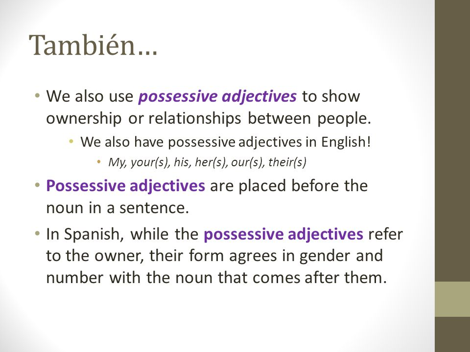 También… We also use possessive adjectives to show ownership or relationships between people. We also have possessive adjectives in English!