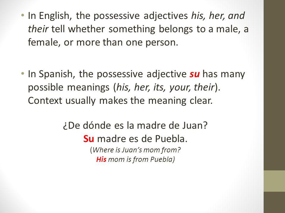 ¿De dónde es la madre de Juan Su madre es de Puebla.