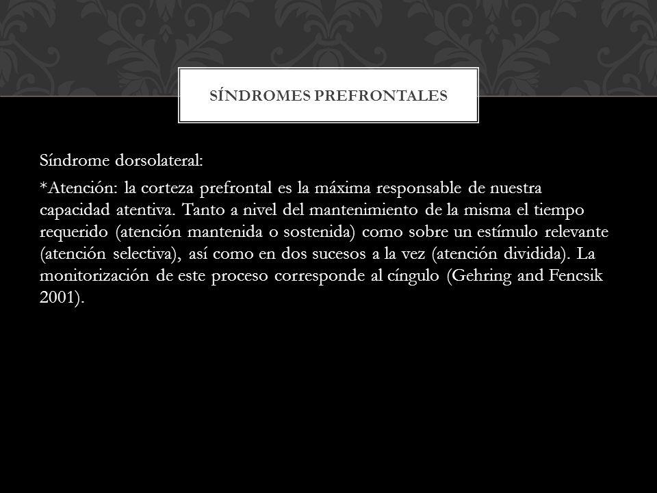 Síndromes prefrontales