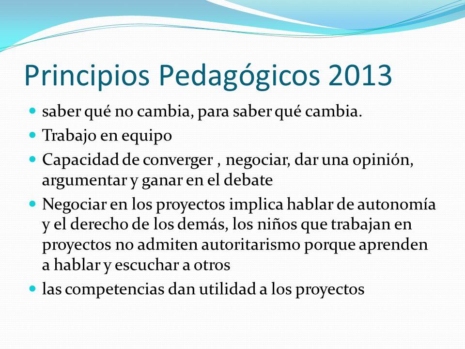 Principios Pedagógicos 2013
