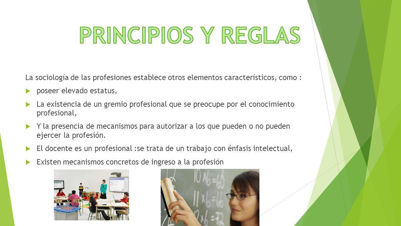 PRINCIPIOS Y REGLAS La sociología de las profesiones establece otros elementos característicos, como :