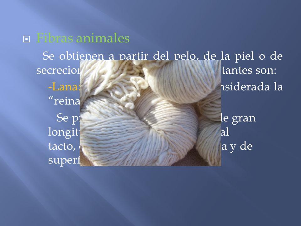 Fibras animales Se obtienen a partir del pelo, de la piel o de secreciones internas. Las más importantes son: