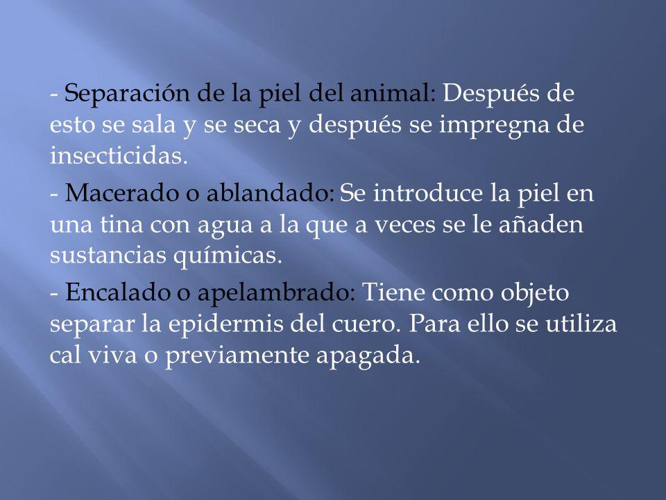 - Separación de la piel del animal: Después de esto se sala y se seca y después se impregna de insecticidas.