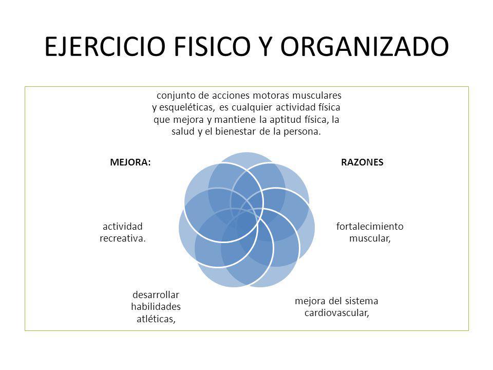 EJERCICIO FISICO Y ORGANIZADO