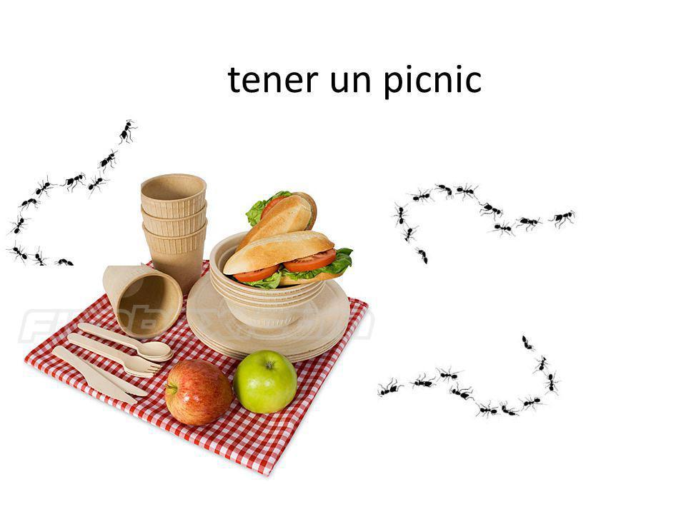 tener un picnic