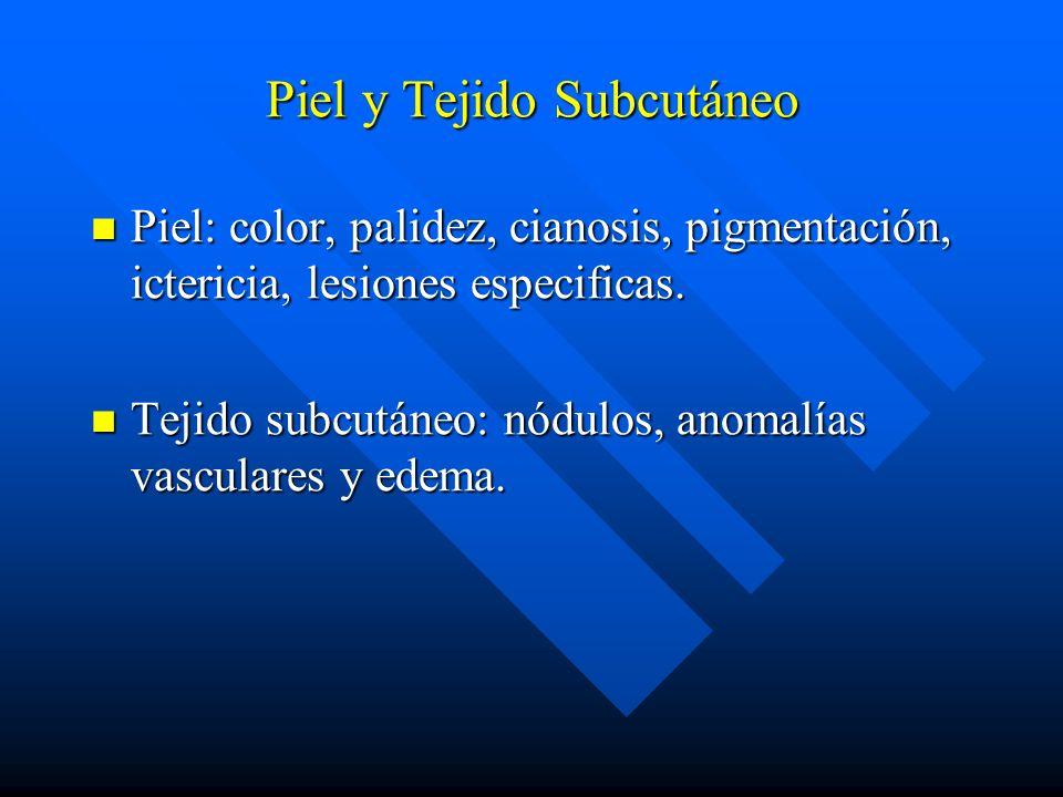 Piel y Tejido Subcutáneo