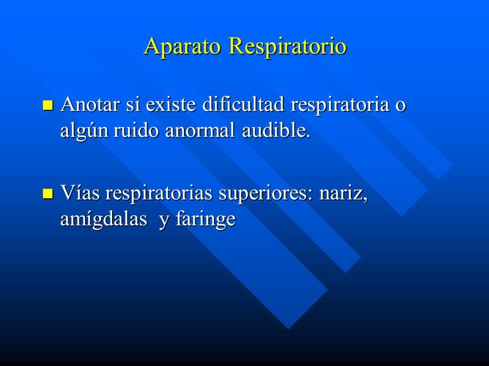 Aparato Respiratorio Anotar si existe dificultad respiratoria o algún ruido anormal audible.