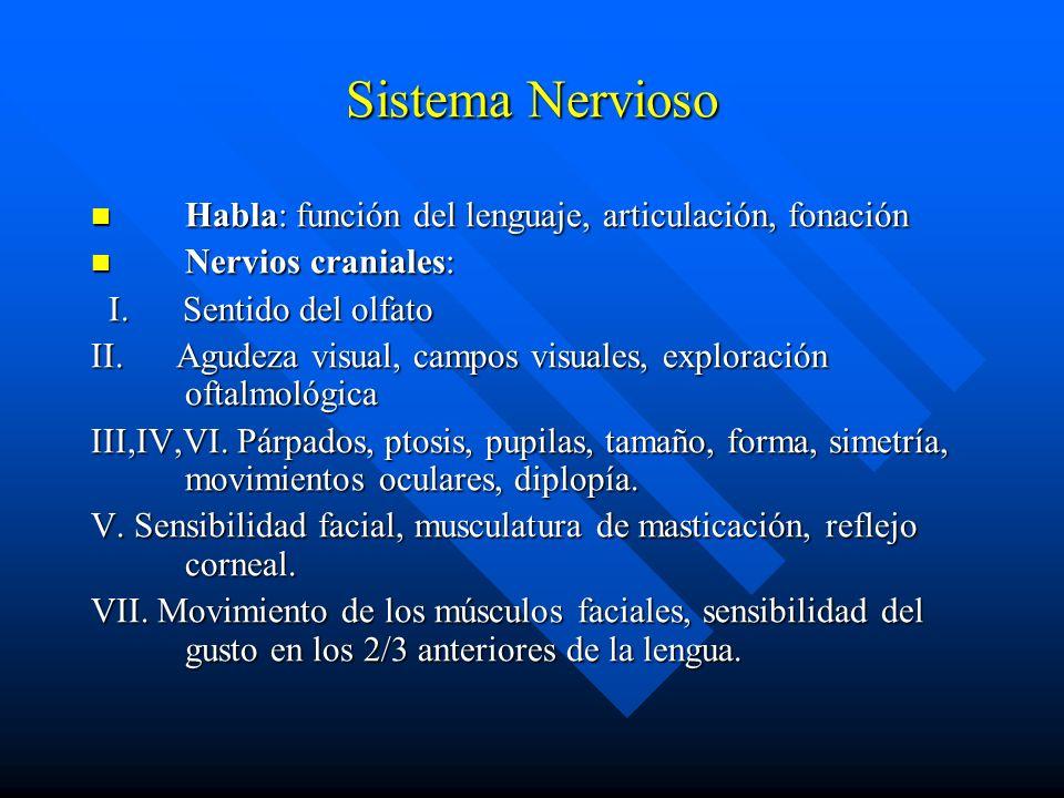 Sistema Nervioso Habla: función del lenguaje, articulación, fonación