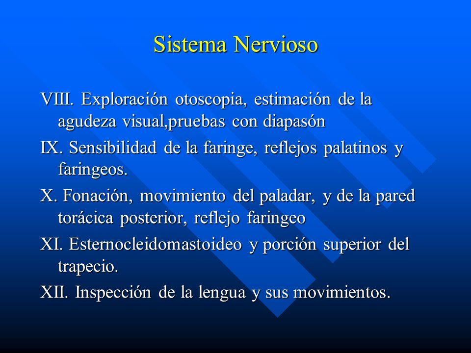 Sistema Nervioso VIII. Exploración otoscopia, estimación de la agudeza visual,pruebas con diapasón.