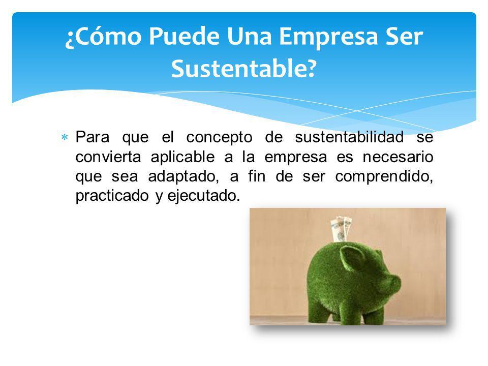 ¿Cómo Puede Una Empresa Ser Sustentable