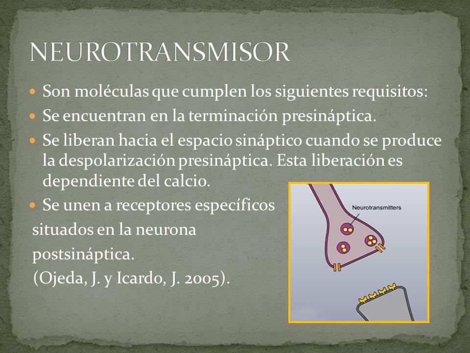 NEUROTRANSMISOR Son moléculas que cumplen los siguientes requisitos: