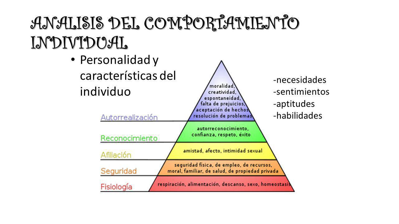 ANALISIS DEL COMPORTAMIENTO INDIVIDUAL