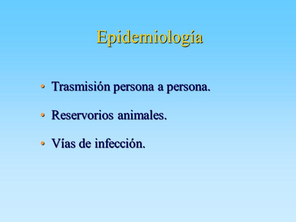 Epidemiología Trasmisión persona a persona. Reservorios animales.