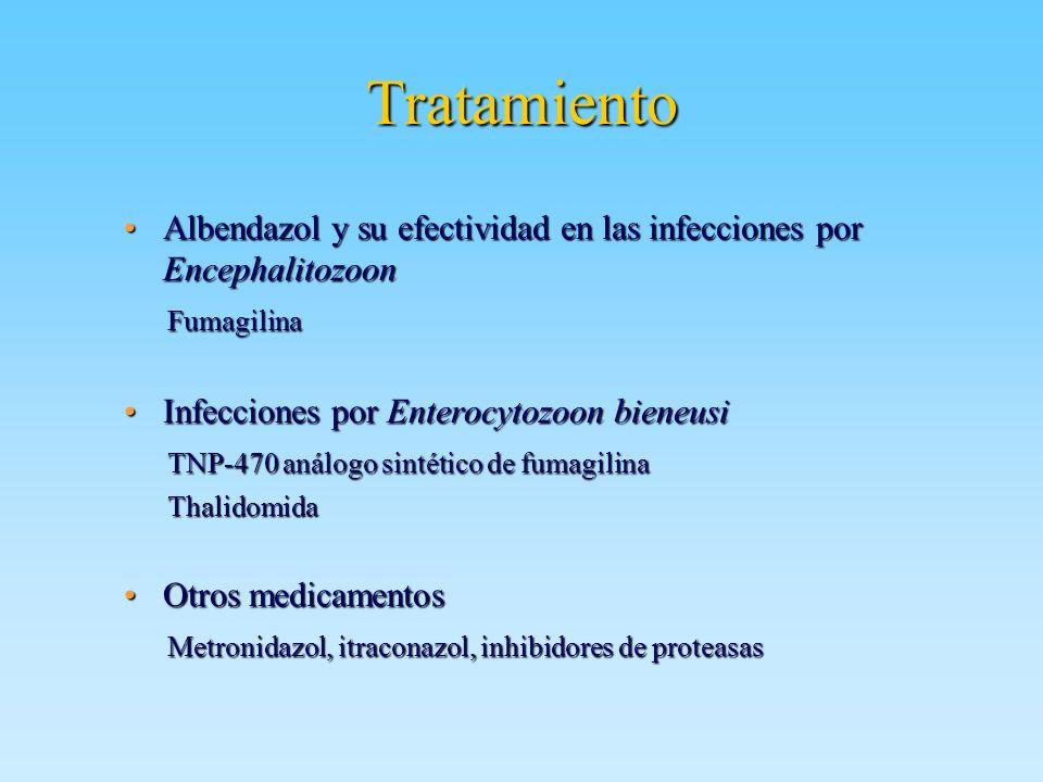 Tratamiento Albendazol y su efectividad en las infecciones por Encephalitozoon. Fumagilina. Infecciones por Enterocytozoon bieneusi.