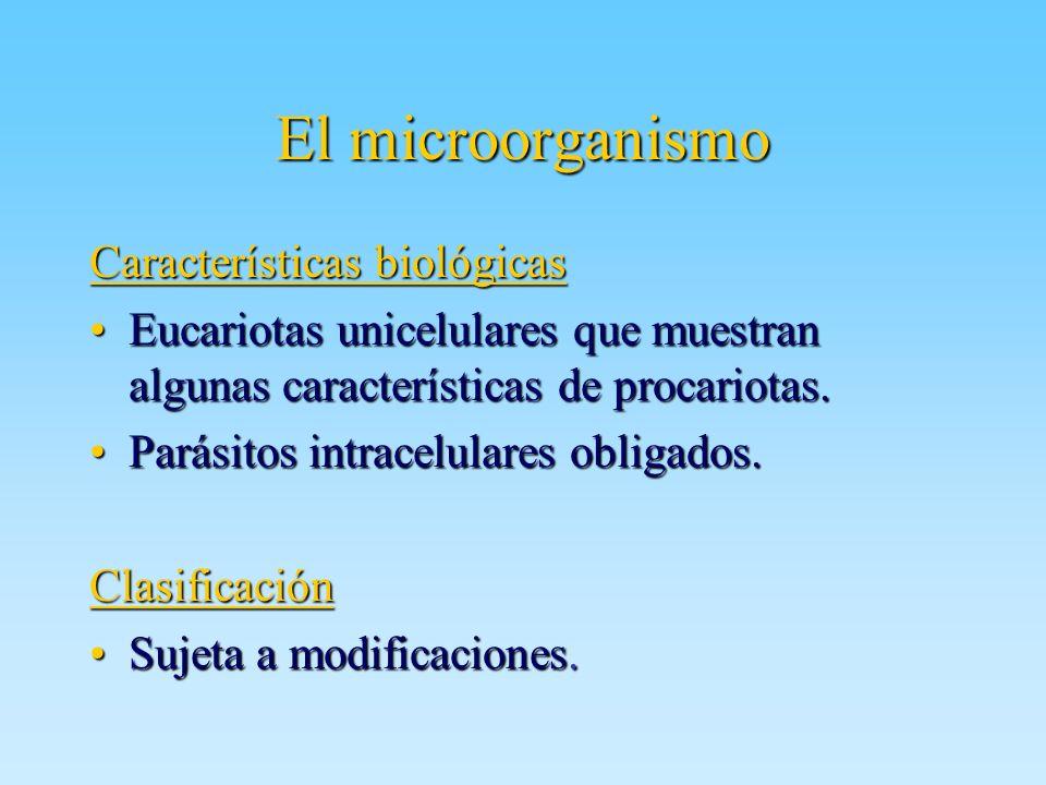 El microorganismo Características biológicas