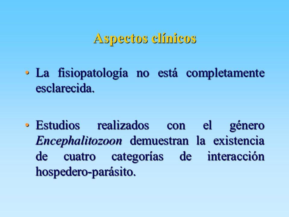 Aspectos clínicos La fisiopatología no está completamente esclarecida.