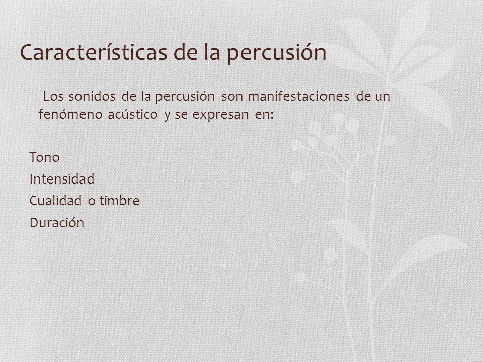 Características de la percusión