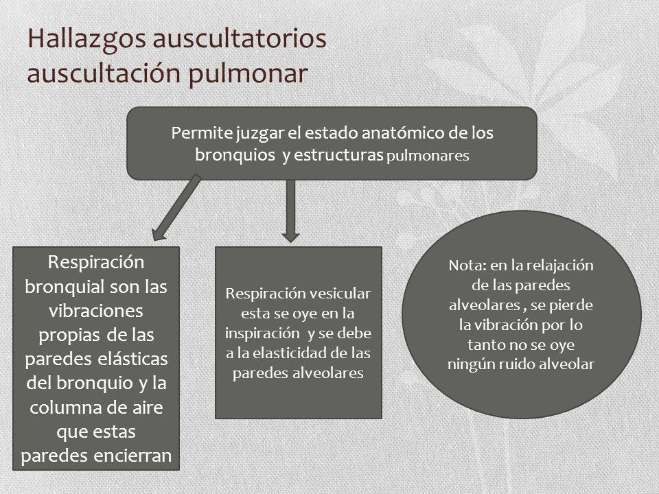 Hallazgos auscultatorios auscultación pulmonar