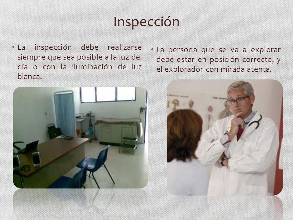 Inspección La inspección debe realizarse siempre que sea posible a la luz del día o con la iluminación de luz blanca.