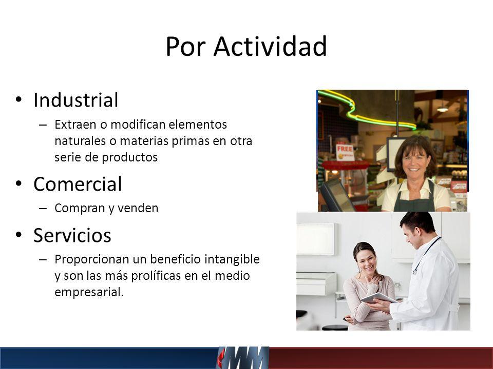Por Actividad Industrial Comercial Servicios