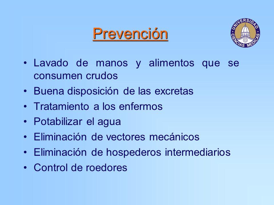 Prevención Lavado de manos y alimentos que se consumen crudos