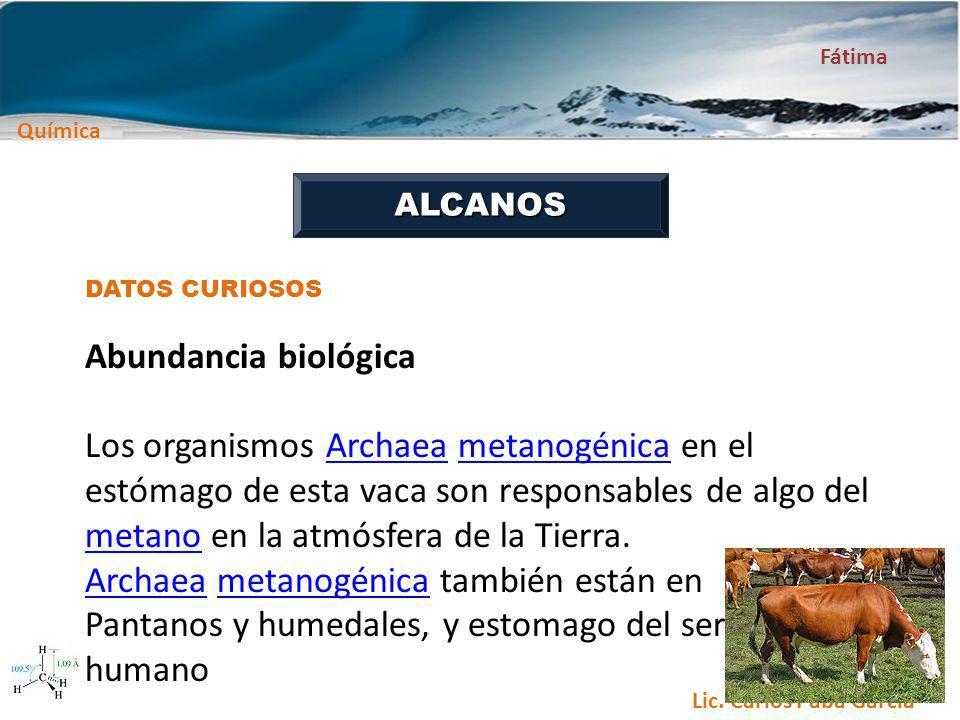 Archaea metanogénica también están en