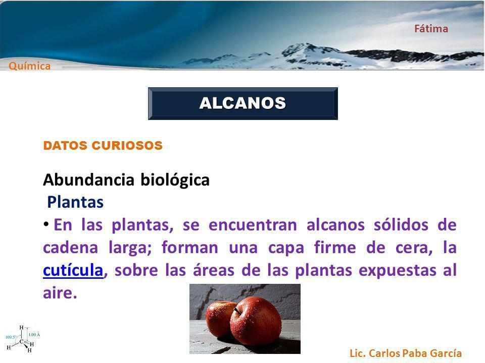 Abundancia biológica Plantas