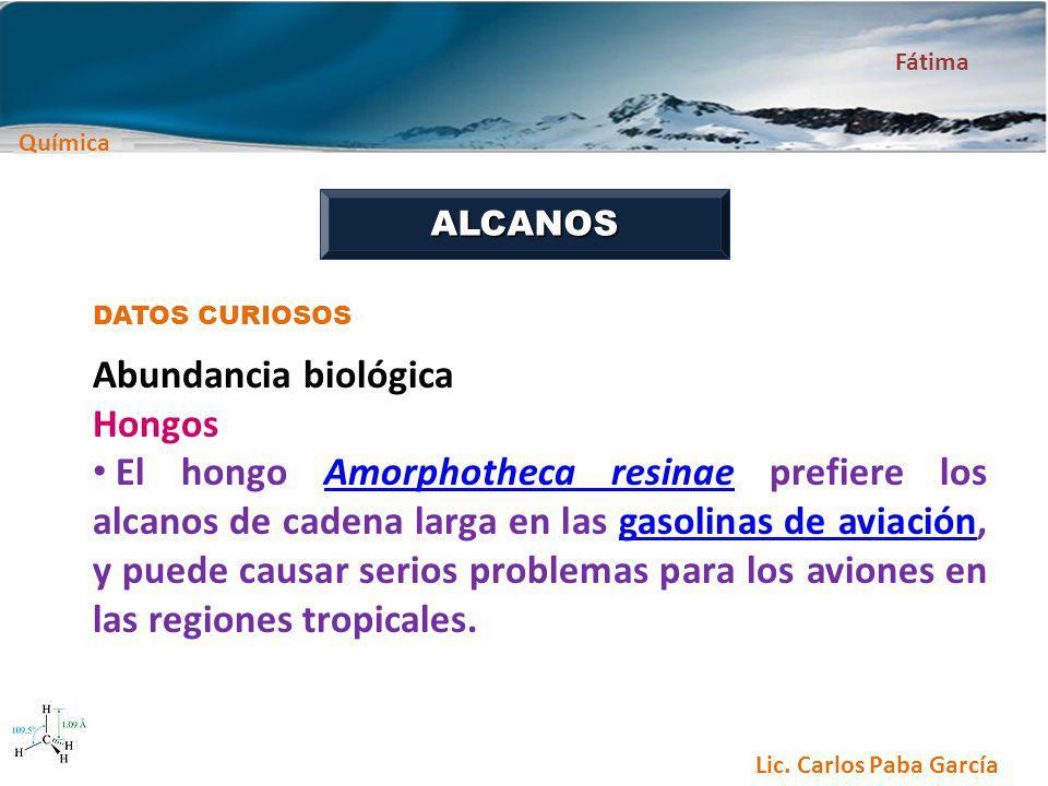 Abundancia biológica Hongos