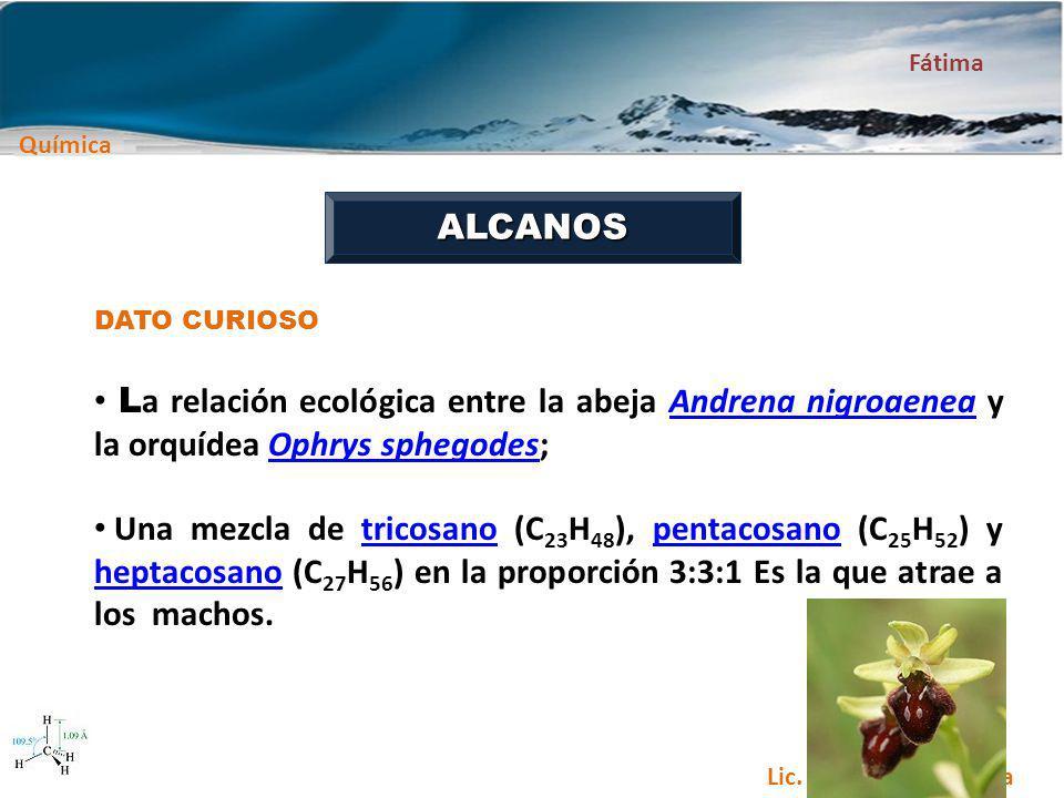 ALCANOS DATO CURIOSO. La relación ecológica entre la abeja Andrena nigroaenea y la orquídea Ophrys sphegodes;