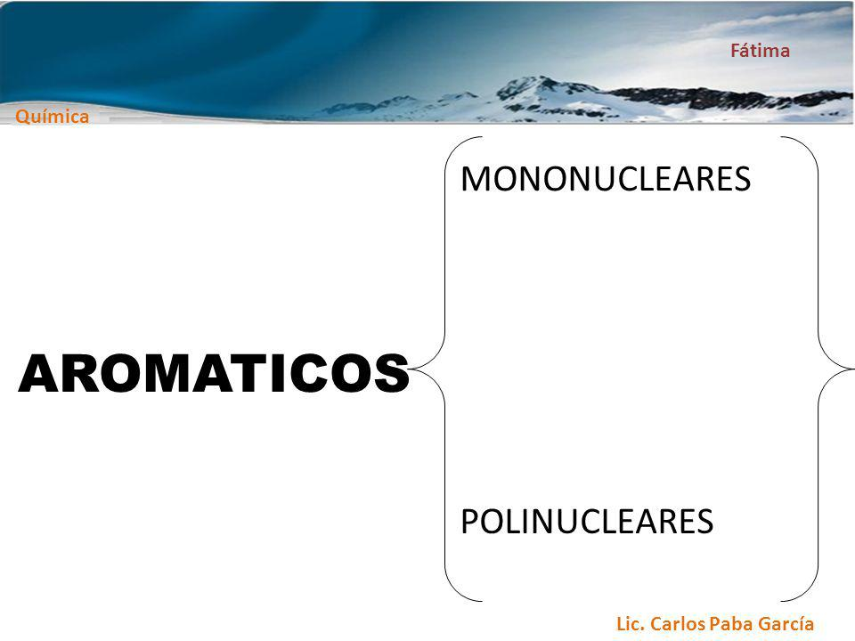 AROMATICOS MONONUCLEARES POLINUCLEARES