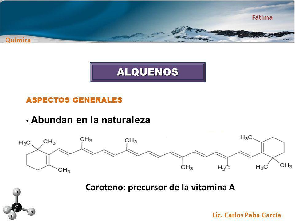 Caroteno: precursor de la vitamina A
