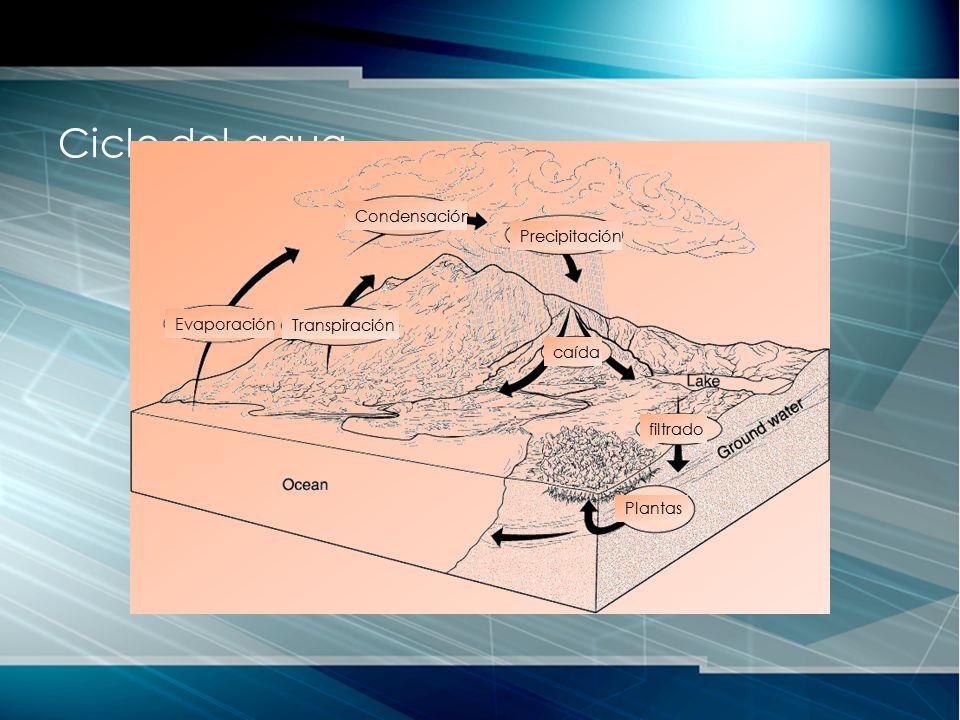 Ciclo del agua Condensación Precipitación Evaporación Transpiración