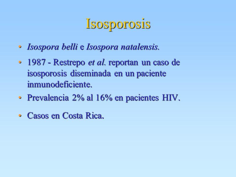 Isosporosis Isospora belli e Isospora natalensis.