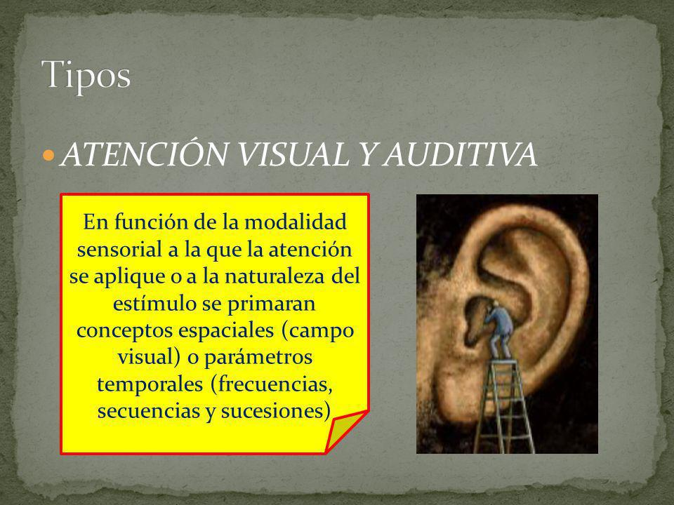 Tipos ATENCIÓN VISUAL Y AUDITIVA