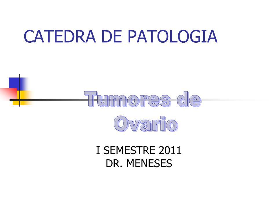 CATEDRA DE PATOLOGIA Tumores de Ovario I SEMESTRE 2011 DR. MENESES