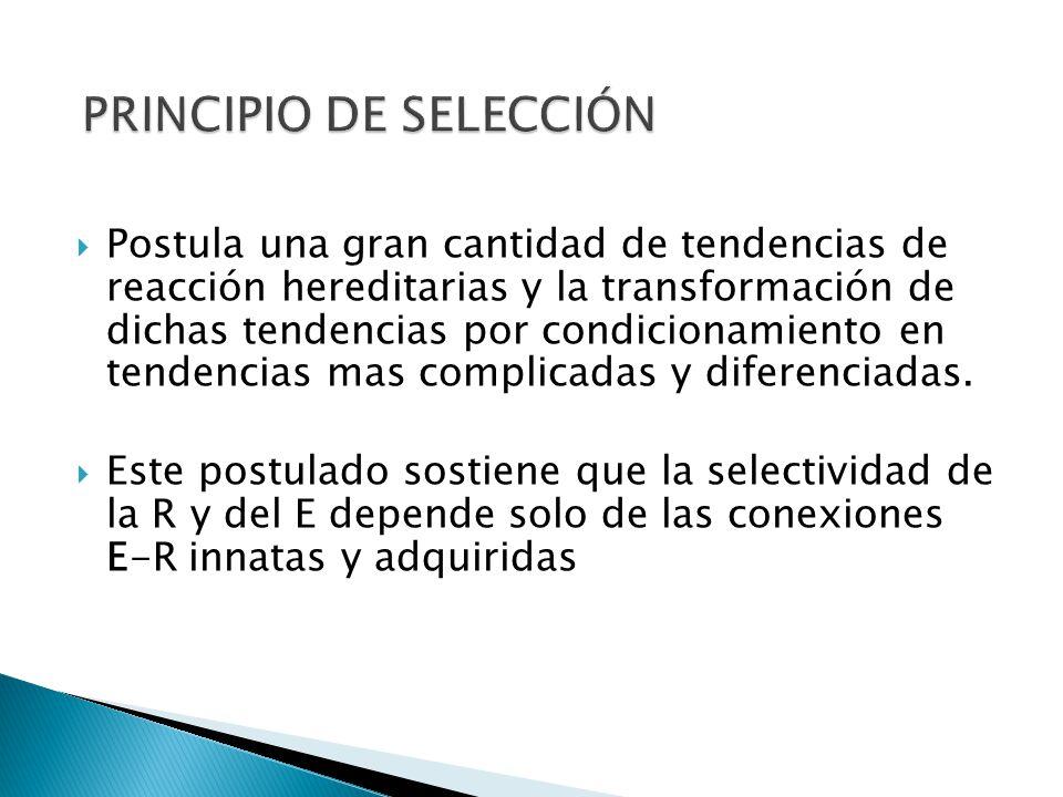 PRINCIPIO DE SELECCIÓN