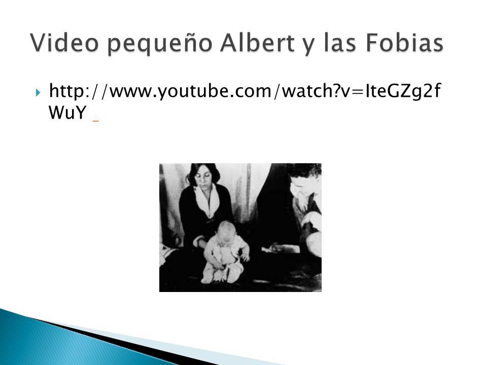 Video pequeño Albert y las Fobias
