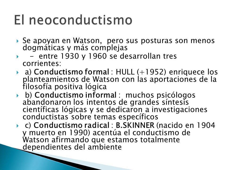El neoconductismo Se apoyan en Watson, pero sus posturas son menos dogmáticas y más complejas.