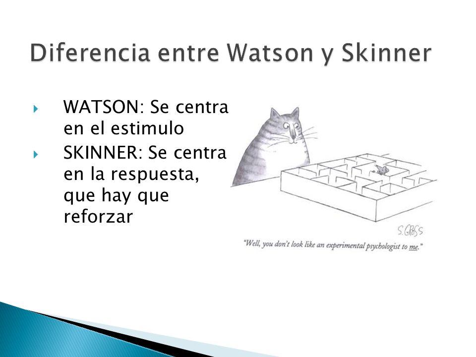 Diferencia entre Watson y Skinner