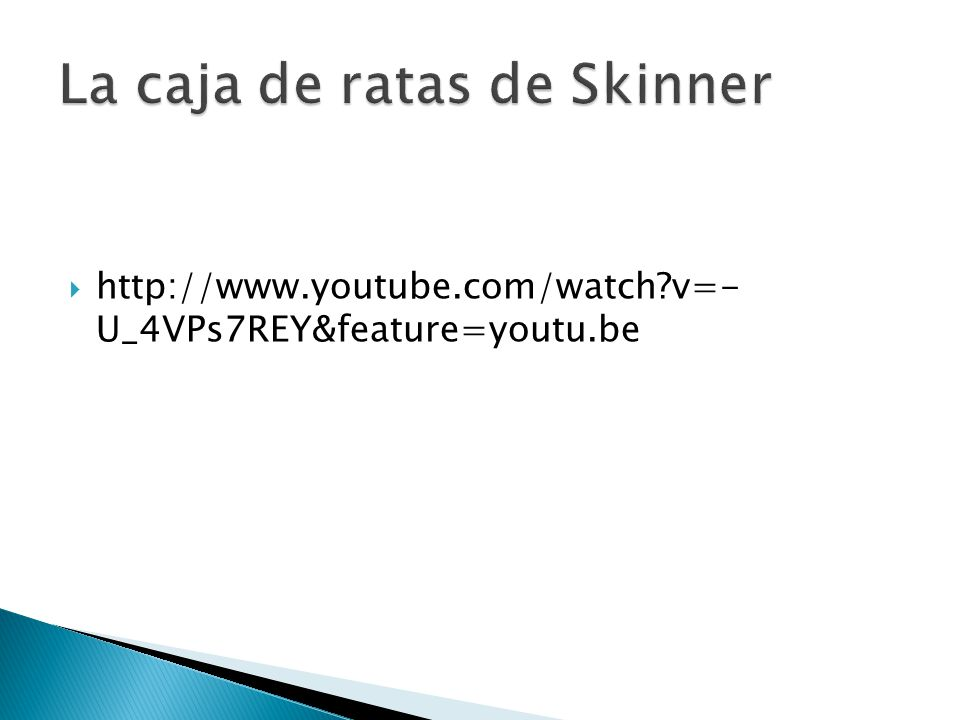 La caja de ratas de Skinner