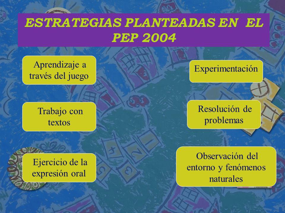 ESTRATEGIAS PLANTEADAS EN EL PEP 2004